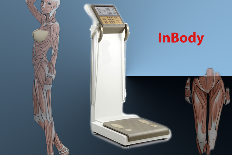 inbodyanotomy